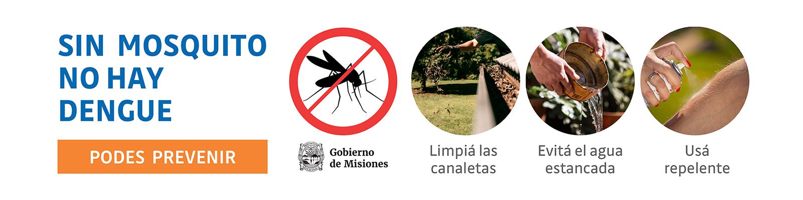 dengue-banner-web